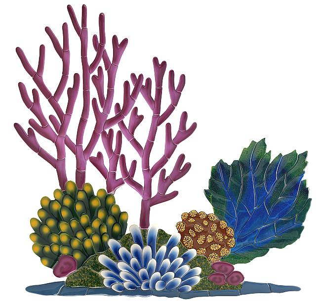 650x613 Coral Reef Clipart Amp Look At Coral Reef Clip Art Images
