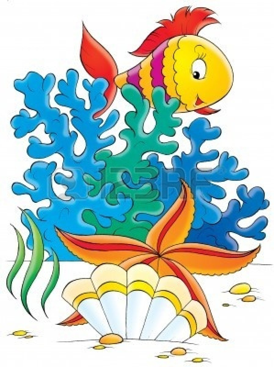 897x1200 Coral Reef Fish Clipart