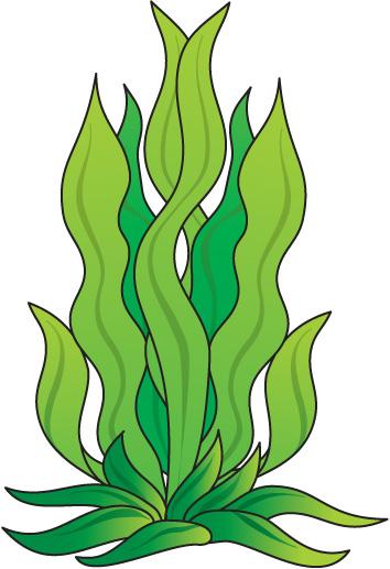 354x517 Seaweed Clipart Underwate Scene 3889776