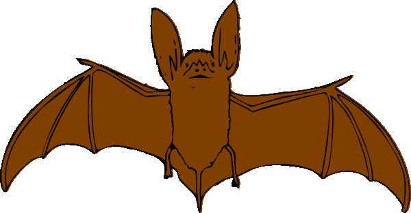 600x312 Brown Bat Clip Art