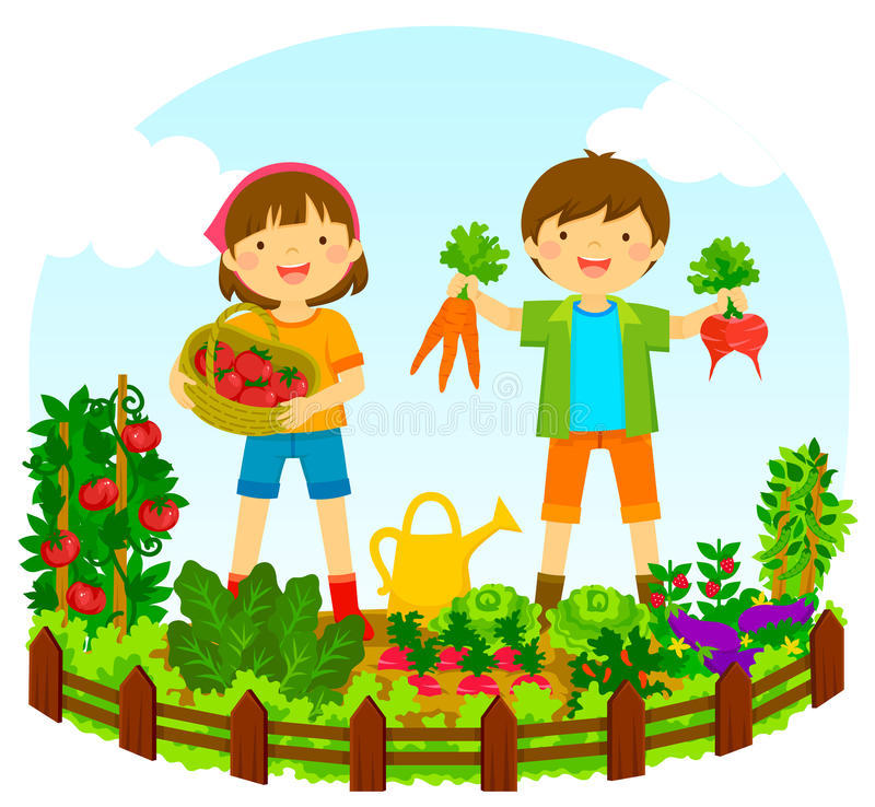 Vegetable Garden Clipart At GetDrawings