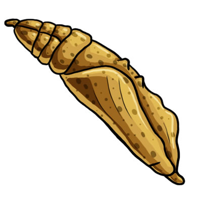 400x400 Caterpillar Clipart Cacoon