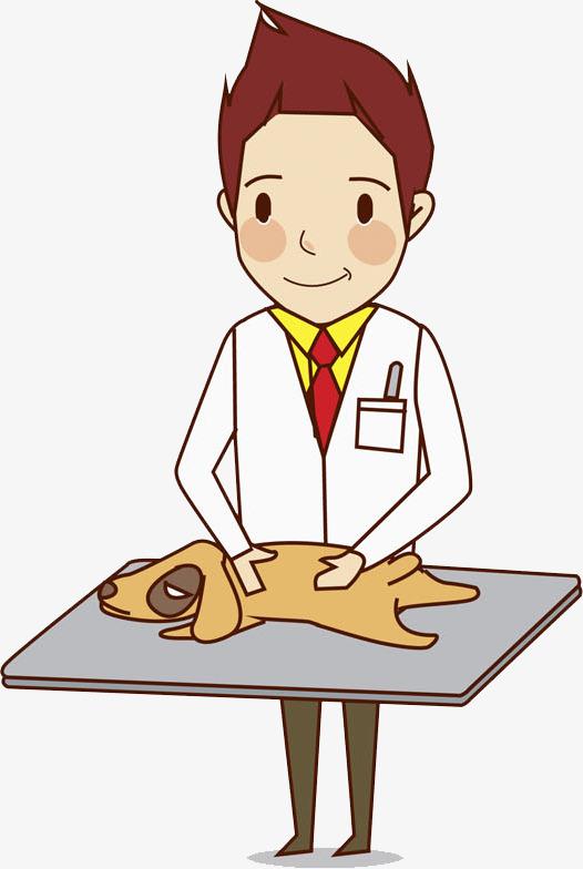 526x784 Hand Drawn Veterinarian, Cartoon, Hand, Puppy Png Image