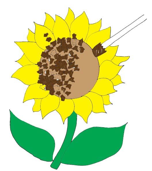 528x594 Tissue Paper Sunflowers Craft