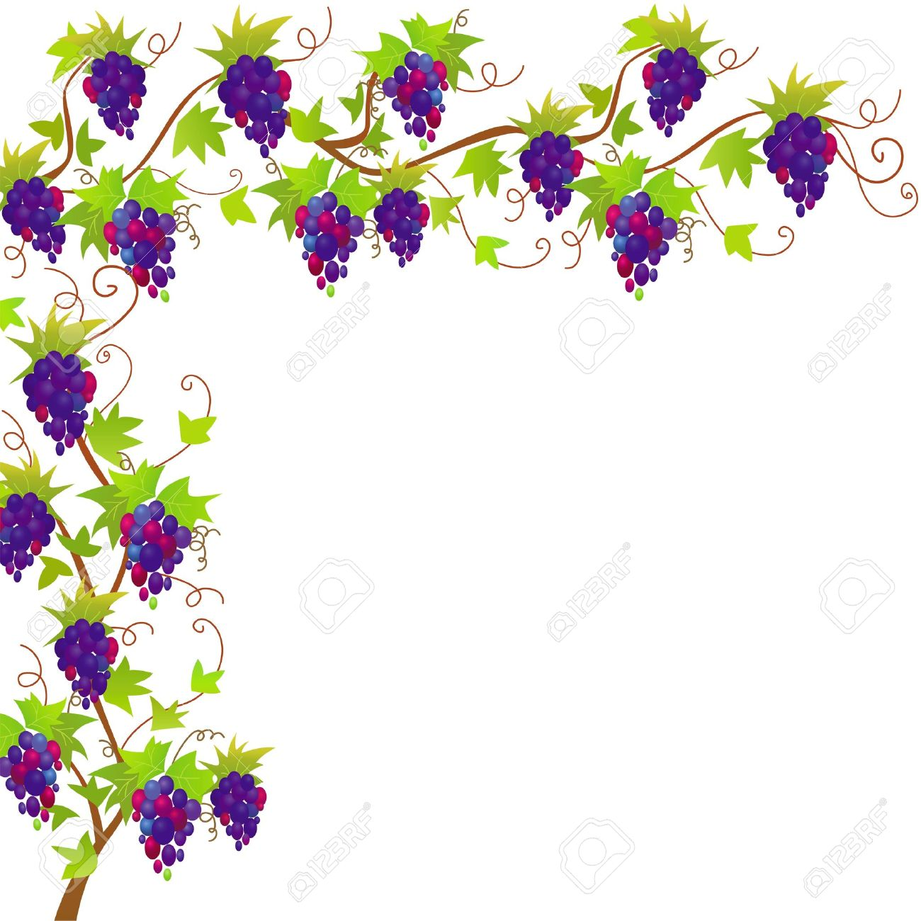 flower vine drawing at getdrawings com free for personal use rh getdrawings com Vine Border Clip Art Large Vine Clip Art