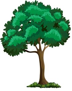 236x299 Painted Green Tree Png Clipart Picture Wallpaper Vintage