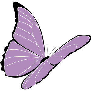 300x300 Public Domain Butterfly Clipart Amp Public Domain Butterfly Clip Art
