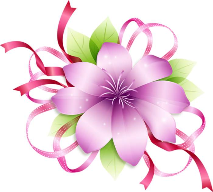 700x629 Png Clipart Flower Png Clipart Clip Art Library Download