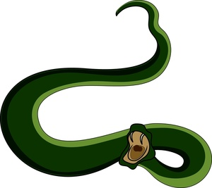 300x267 Snake With Mouth Open Clip Art