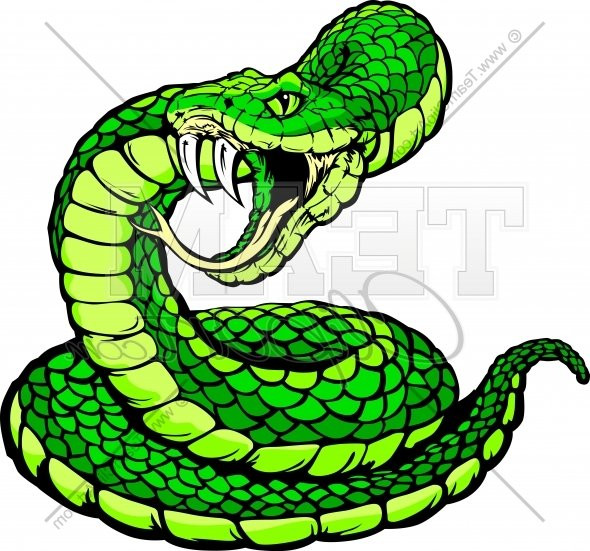 590x551 Viper Clipart Snake Face 4036978