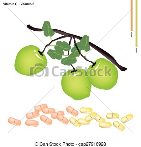 450x470 Green Apple With Vitamin C And Vitamin B. Healthcare Vector