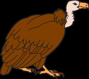 298x264 Big Brown Vulture Clip Art