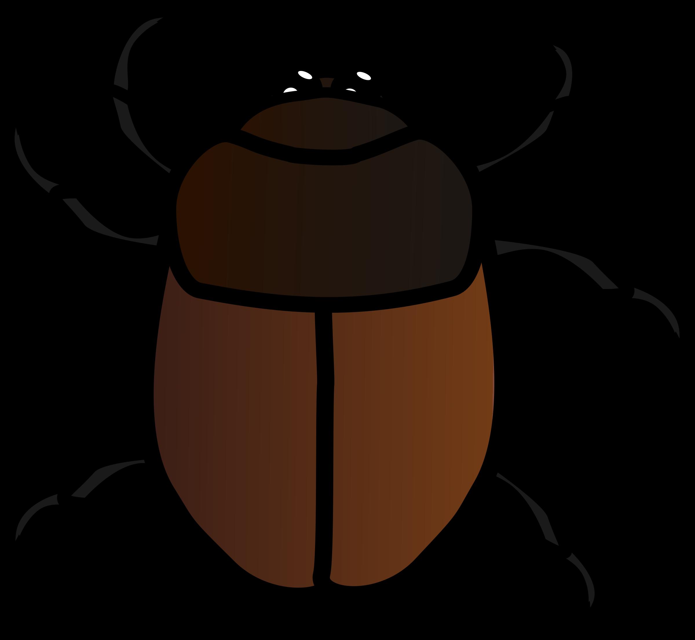 2400x2210 Clip Art Beetle Clip Art
