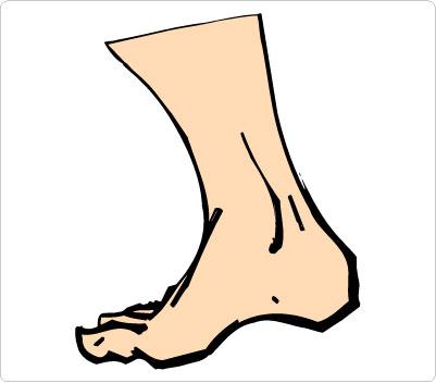 401x352 Foot Animated Walking Feet Clip Art Image