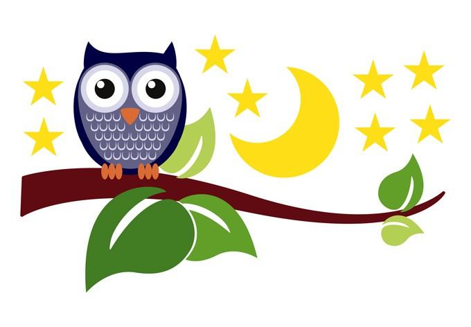 680x472 Elegant Owl Wall Art About My Blog