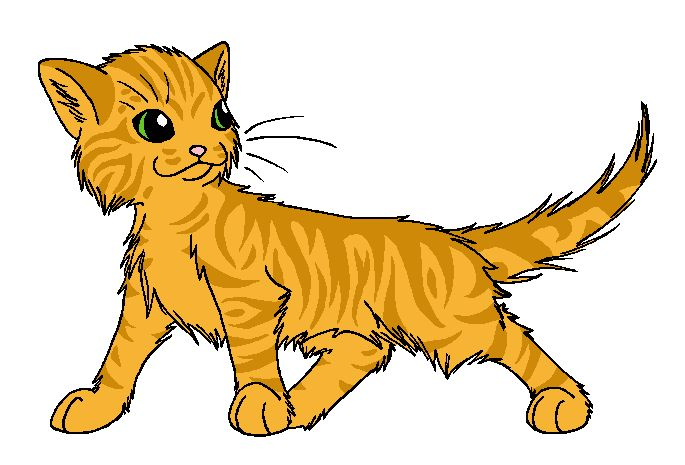 685x465 21 Best Warrior Cat Coloring Pages Images On Warrior