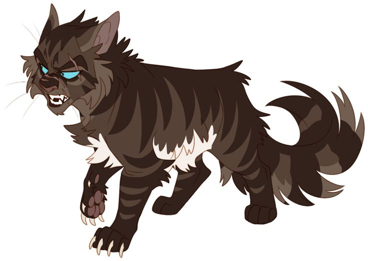 736x522 452 Best 12 Days Of Warriors Images On Warrior Cats