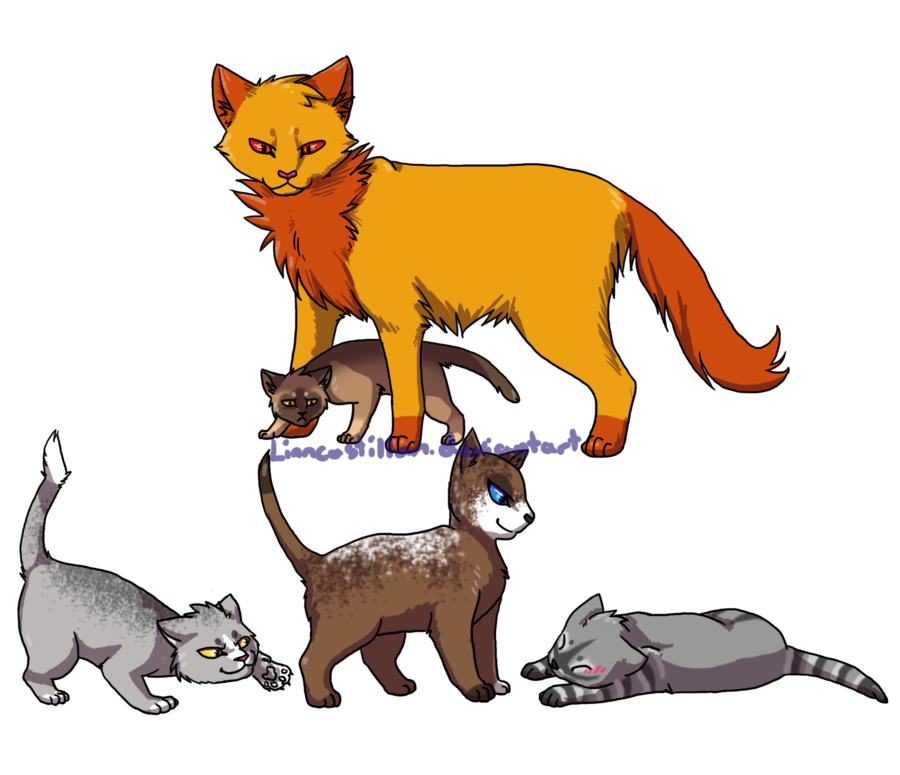 900x775 Adopted Warrior Cats By Drekalder