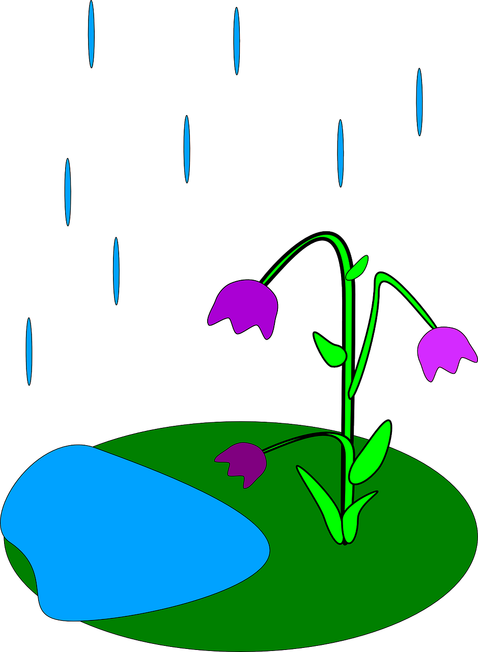 939x1280 How Is Rain Formed Rain Facts Cool Kid Facts