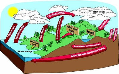 400x250 Water Cycle