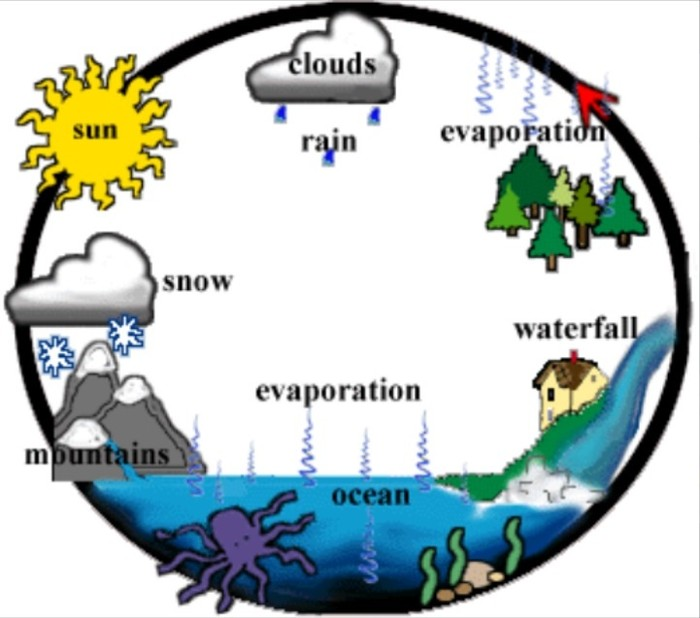 700x618 Water Cycle Clipart