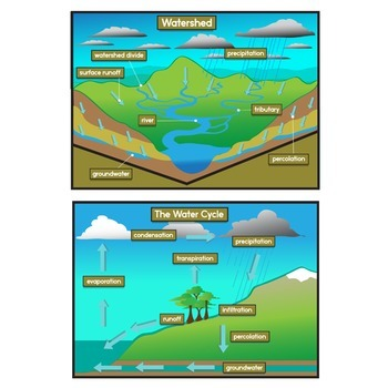 350x350 Watersheds + The Water Cycle Clip Art Set By The Painted Crow Tpt