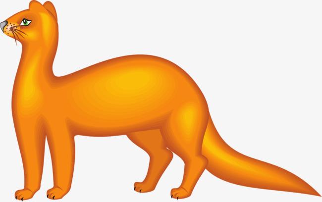 650x408 Orange Weasel, Orange, Weasel, Animal Png Image And Clipart