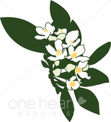 353x388 Clipart White Flowers Wedding Flower Clipart