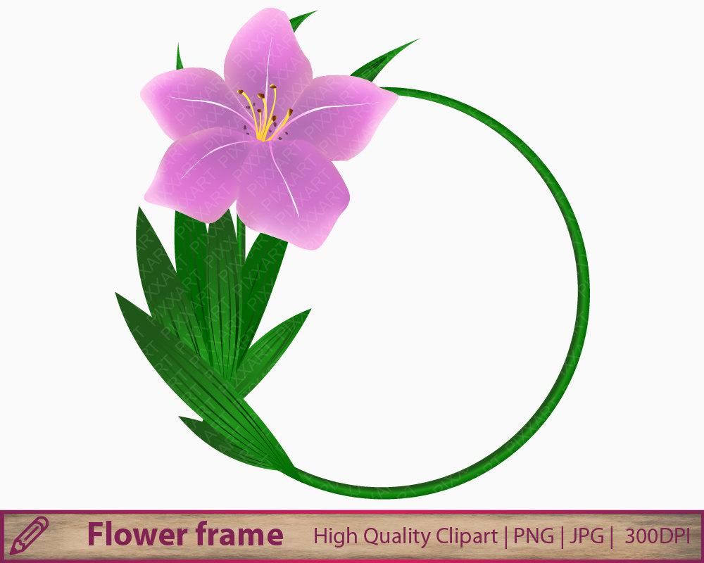 1000x800 Pink Flower Clipart, Purple Lily Background Clip Art, Digital