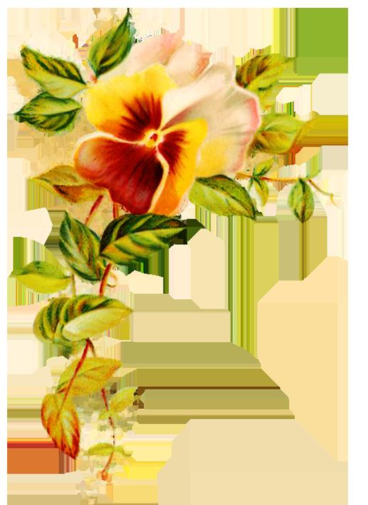 517x709 Digital Scrapbooking Flowers