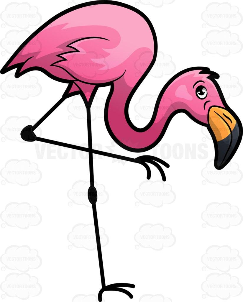 824x1024 A Bright Pink Flamingo Cartoon Clipart Vector Toons
