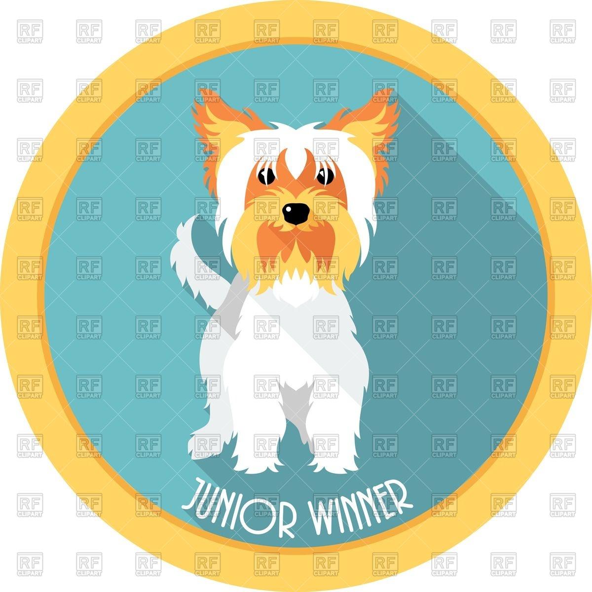 1200x1200 Dog Yorkshire Terrier