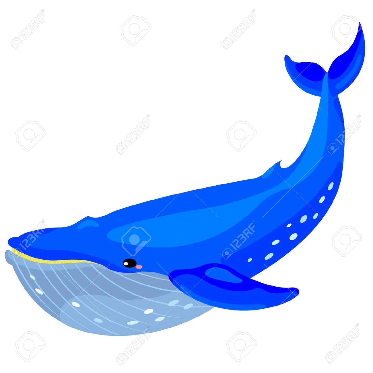 whale clipart at getdrawings com free for personal use whale rh getdrawings com humpback whale clipart black and white