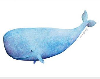 340x270 Sperm Whale Clipart Clipart Panda