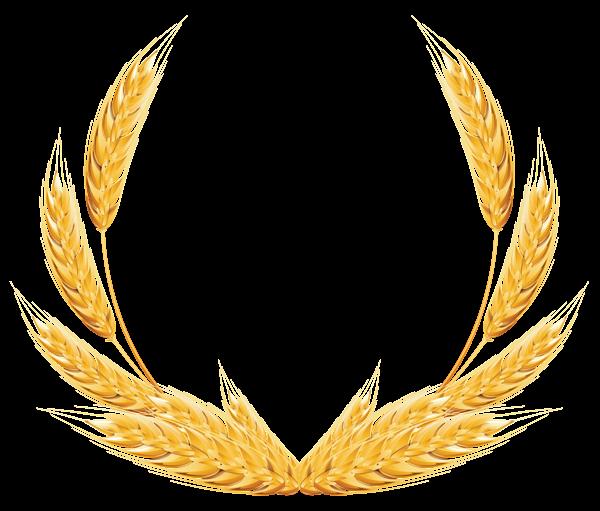 600x511 Wheat Decoration Png Clipart Image Photoshop Tutos Freebies