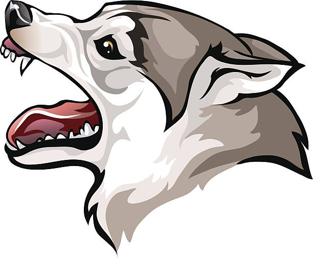 612x505 Collection Of Growling Dog Drawing High Quality, Free