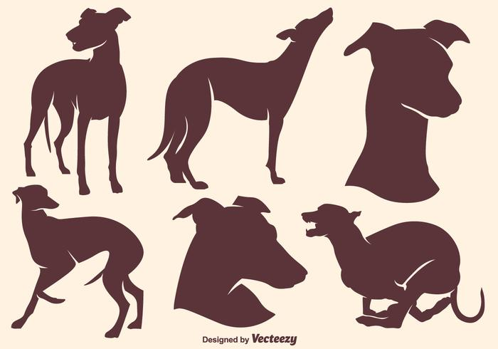 700x490 Whippet Vector Free Download Clip Art