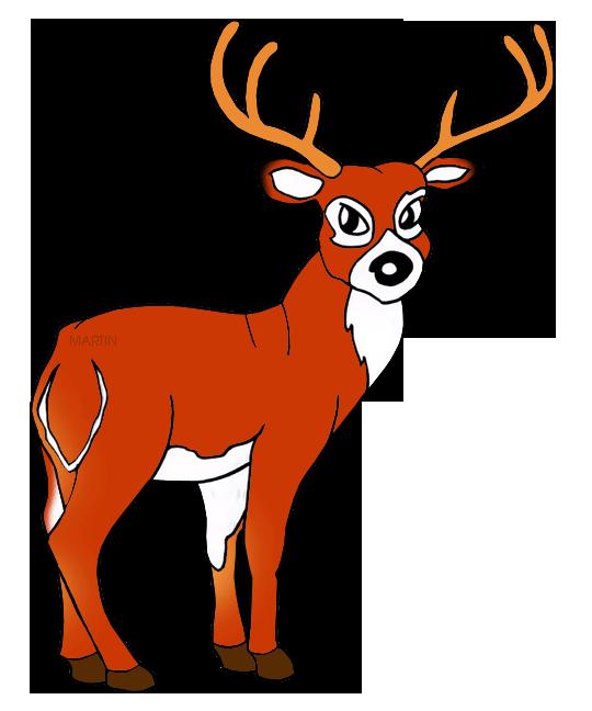 540x648 United States Clip Art By Phillip Martin, Nebraska State Animal