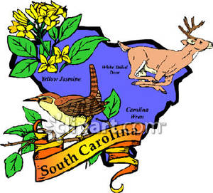 300x271 White Tailed Deer Clipart South Carolina State
