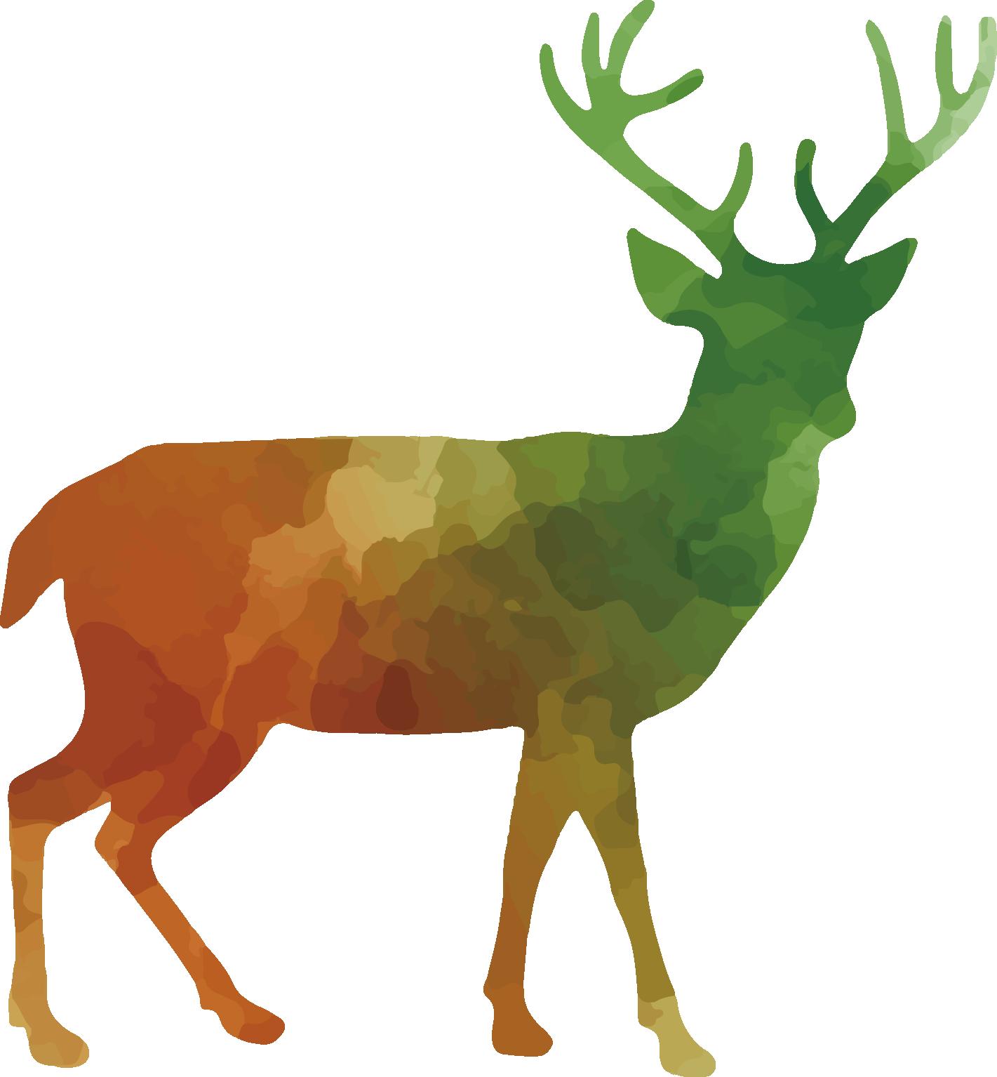 1421x1534 White Tailed Deer Red Deer Reindeer Clip Art