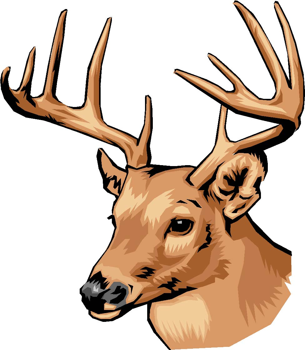 976x1119 Antler Clipart Stag Head