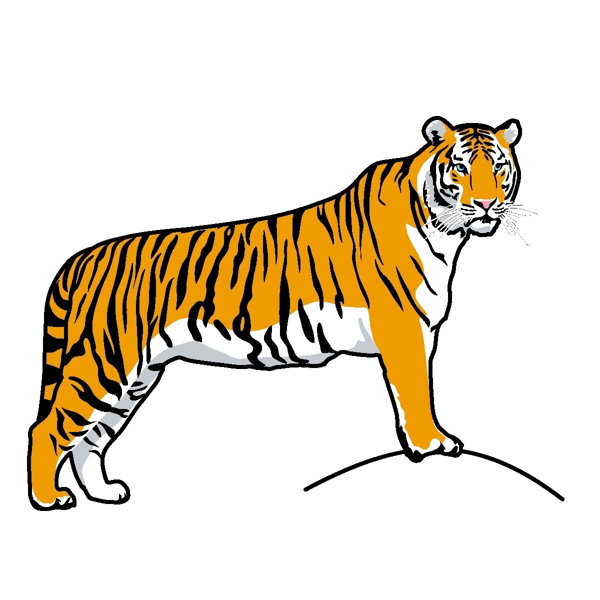 1200x1200 Elegant Of Running Tiger Clipart Black And White