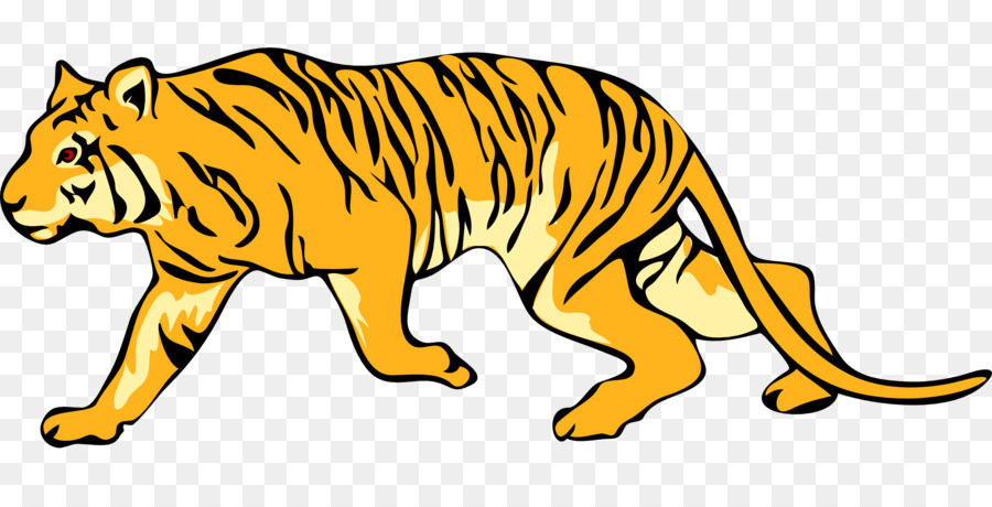 900x460 Felidae Bengal Tiger White Tiger Clip Art