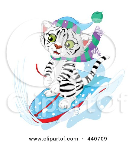 450x470 Royalty Free (Rf) White Tiger Clipart, Illustrations, Vector