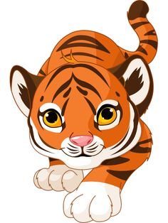 236x314 White Tiger Cub Pictures Tiger Cubs Cute Cartoon Animal Images