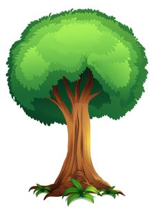 236x312 35 Green Tree Clipart. Clipart Panda