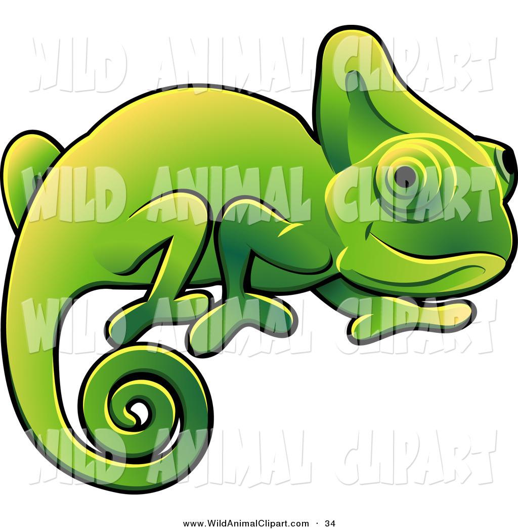 1024x1044 Top 85 Chameleon Clip Art