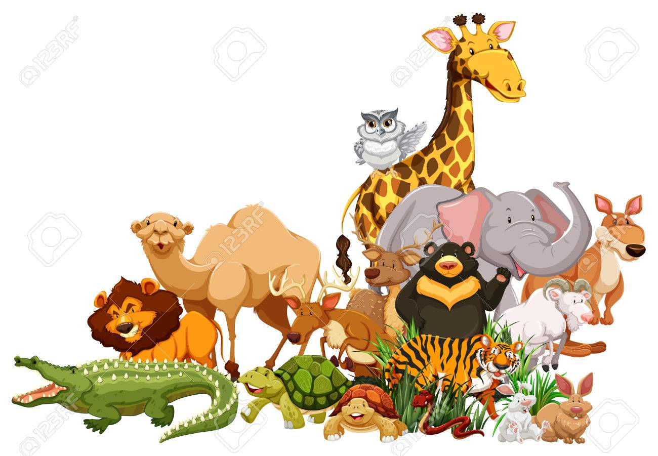 Wild Animal Clipart at GetDrawings Free download