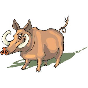 300x300 Wild Boar Clipart, Cliparts Of Wild Boar Free Download (Wmf, Eps