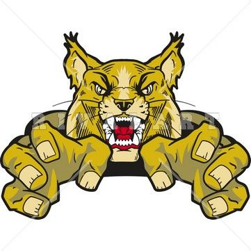 361x361 Clipart Image Of A Wildcat Graphic In Color Wildcat Clipart